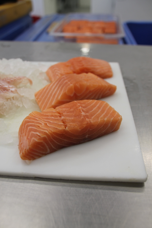Local Fresh Salmon