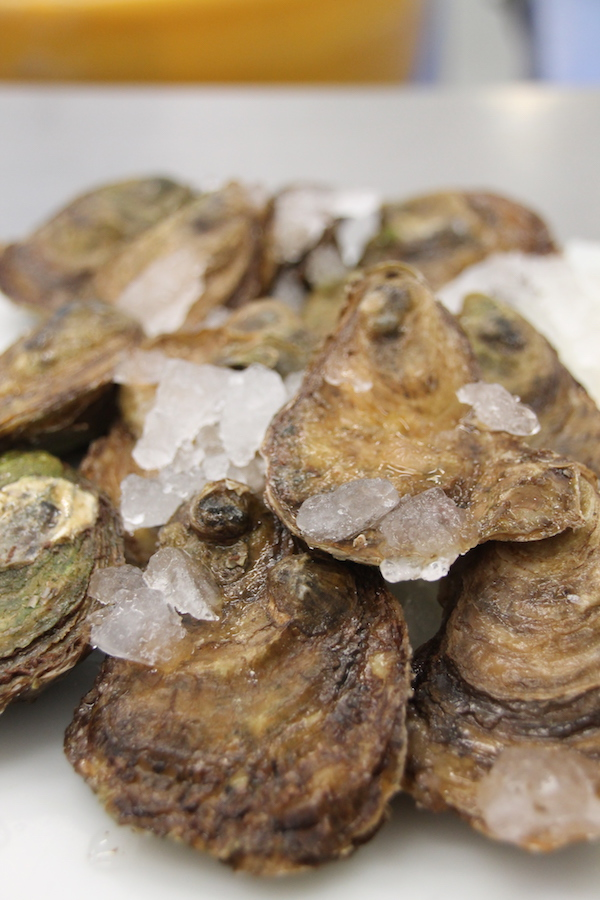 Beautiful Fresh PEI Oysters